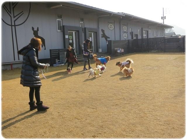 f:id:yasukazu01:20140114222329j:image