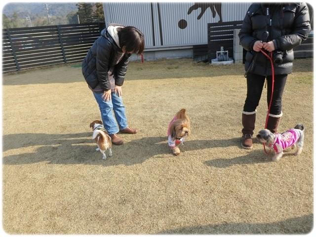 f:id:yasukazu01:20140114222803j:image