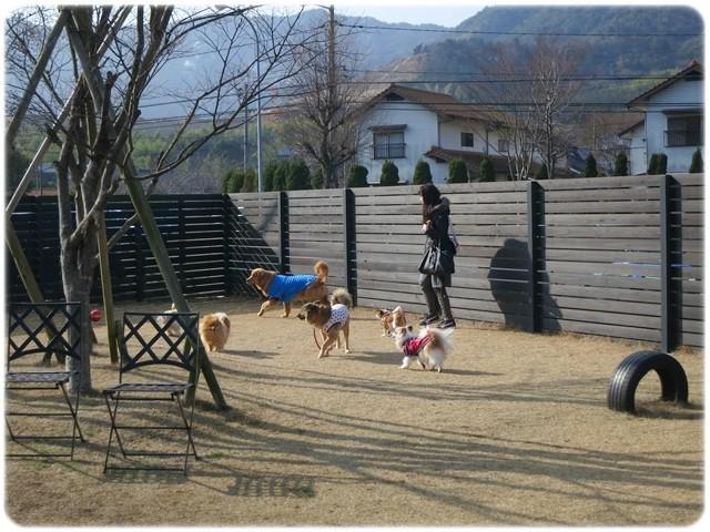 f:id:yasukazu01:20140114223027j:image