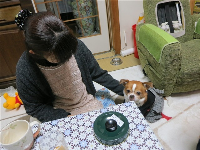 f:id:yasukazu01:20140118195720j:image