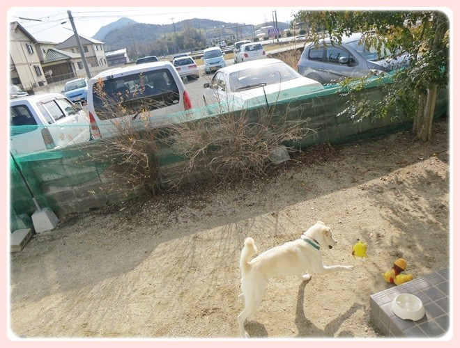 f:id:yasukazu01:20140124134813j:image