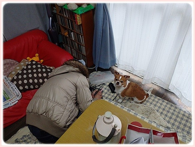 f:id:yasukazu01:20140125212755j:image