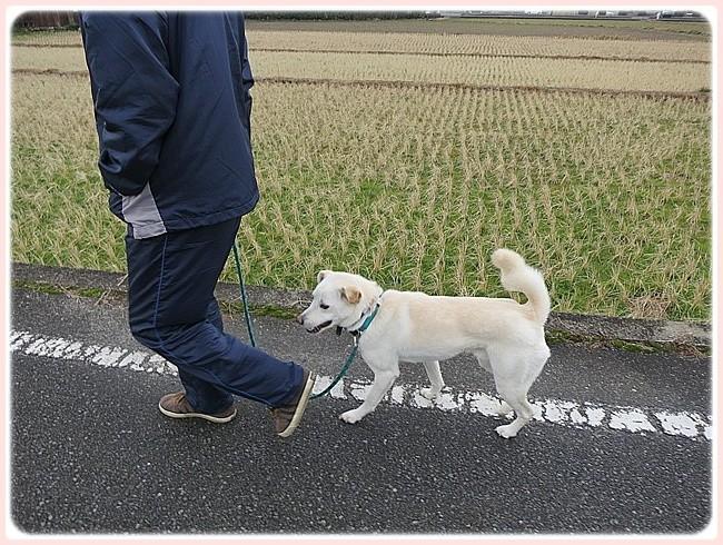 f:id:yasukazu01:20140127230140j:image