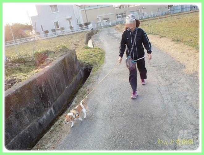 f:id:yasukazu01:20140202223902j:image