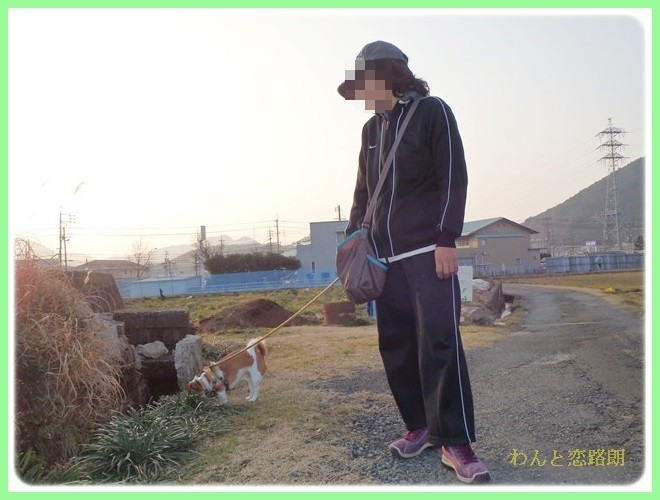 f:id:yasukazu01:20140202223903j:image