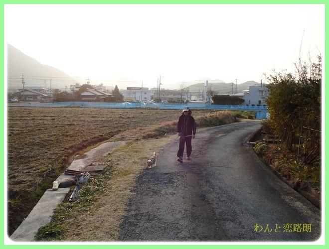f:id:yasukazu01:20140202223904j:image