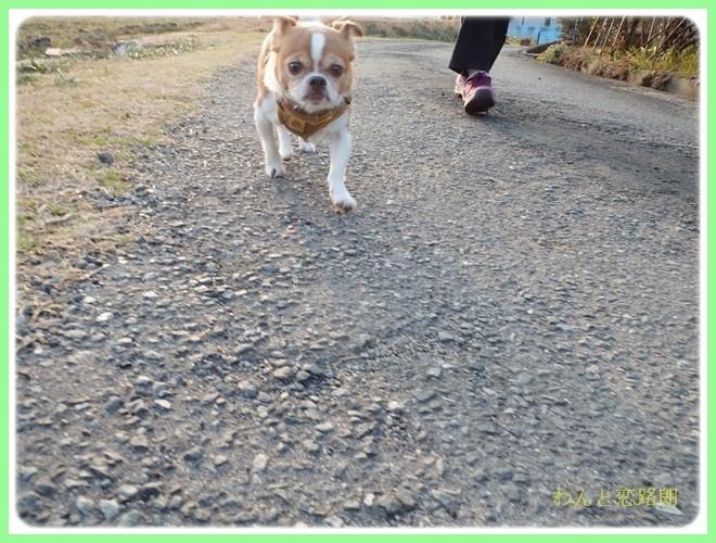 f:id:yasukazu01:20140202223905j:image
