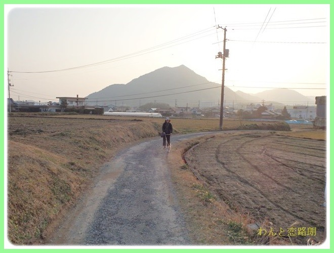 f:id:yasukazu01:20140202223906j:image