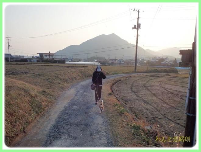 f:id:yasukazu01:20140202223907j:image