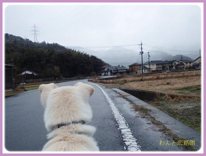 f:id:yasukazu01:20140204194835j:image