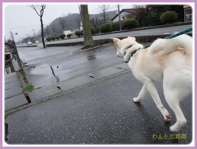 f:id:yasukazu01:20140207211604j:image
