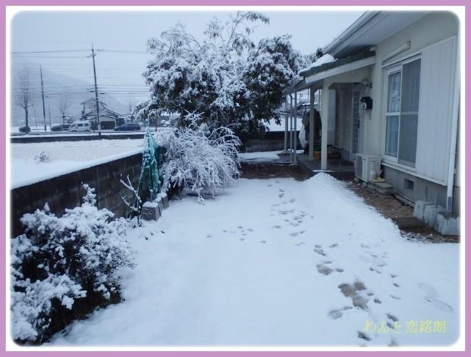 f:id:yasukazu01:20140208180634j:image