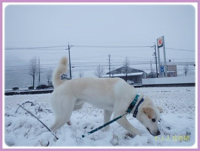 f:id:yasukazu01:20140208180638j:image