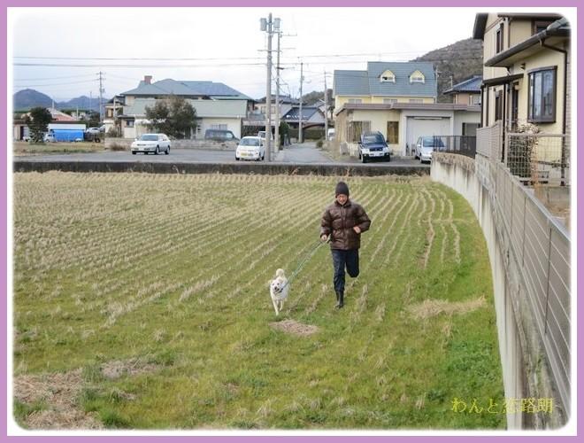 f:id:yasukazu01:20140209222507j:image