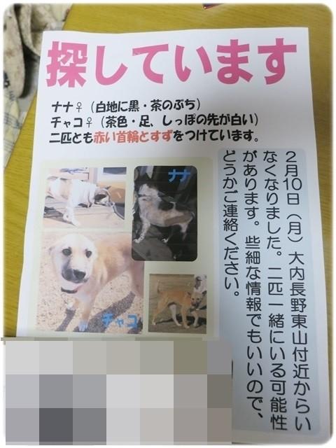 f:id:yasukazu01:20140211221828j:image