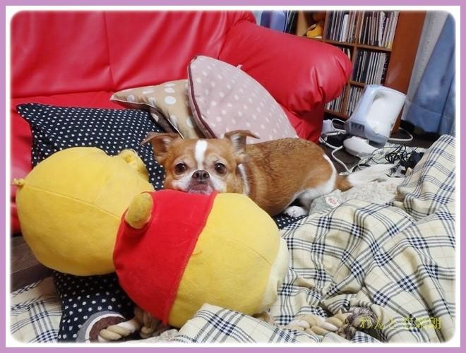 f:id:yasukazu01:20140211222806j:image