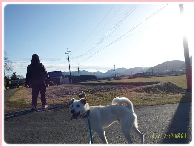 f:id:yasukazu01:20140213224333j:image