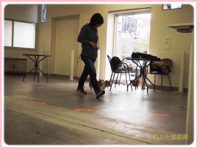 f:id:yasukazu01:20140214195152j:image