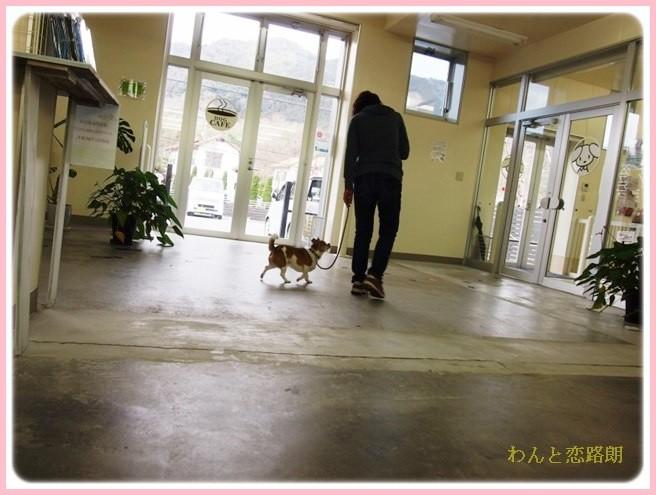 f:id:yasukazu01:20140214205936j:image