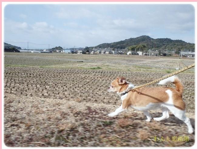 f:id:yasukazu01:20140215194649j:image