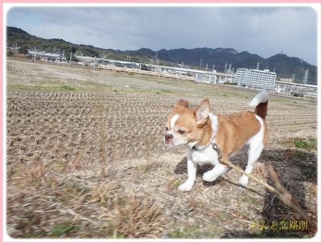 f:id:yasukazu01:20140215194950j:image