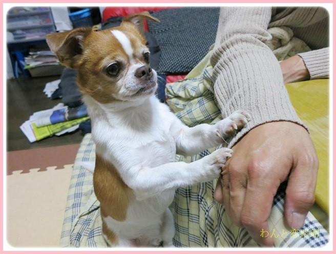 f:id:yasukazu01:20140216213913j:image