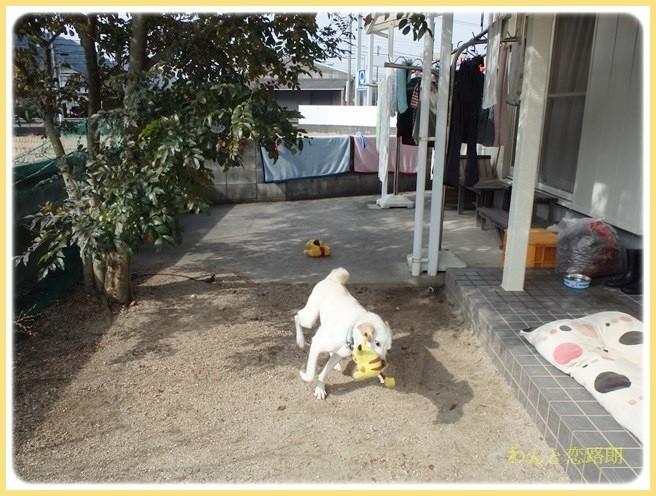 f:id:yasukazu01:20140220222854j:image