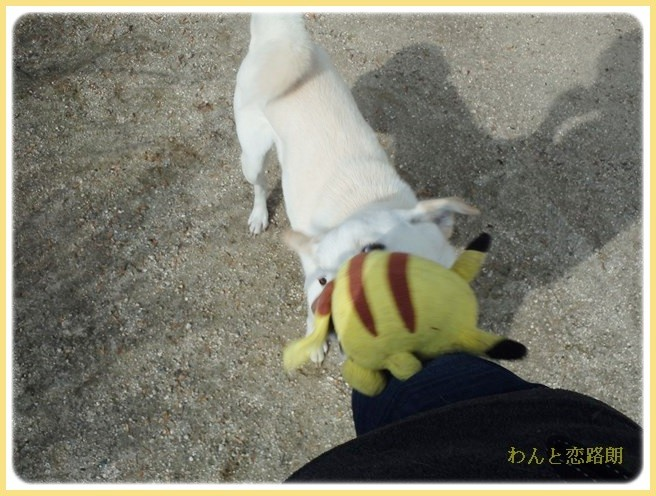 f:id:yasukazu01:20140220222857j:image