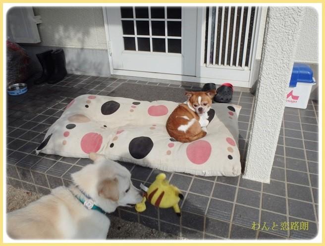 f:id:yasukazu01:20140220223648j:image