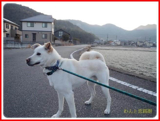f:id:yasukazu01:20140222193626j:image