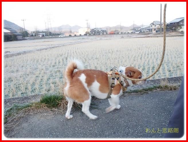 f:id:yasukazu01:20140222193627j:image