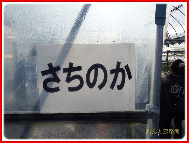 f:id:yasukazu01:20140222193630j:image