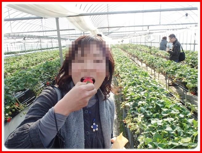 f:id:yasukazu01:20140222195430j:image