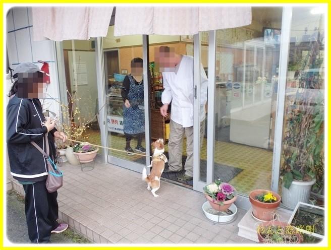 f:id:yasukazu01:20140225205446j:image