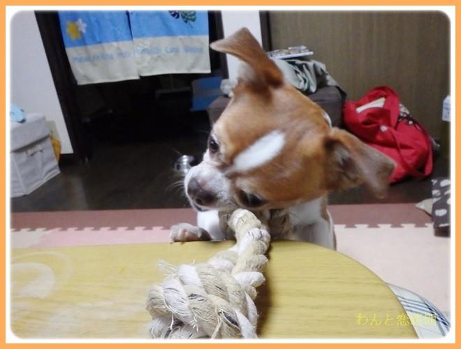 f:id:yasukazu01:20140226104305j:image
