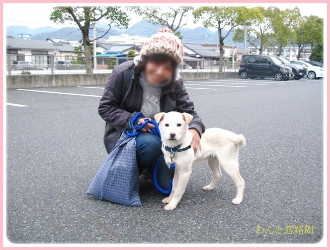 f:id:yasukazu01:20140301083900j:image