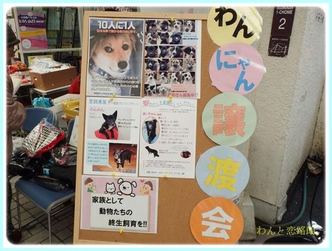 f:id:yasukazu01:20140303214713j:image