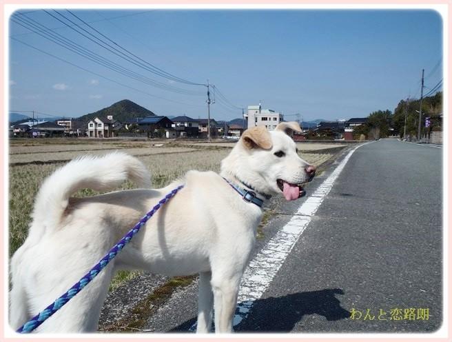 f:id:yasukazu01:20140313224954j:image