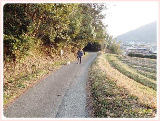 f:id:yasukazu01:20140313224956j:image