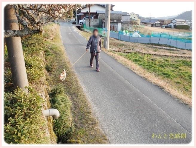 f:id:yasukazu01:20140313225612j:image