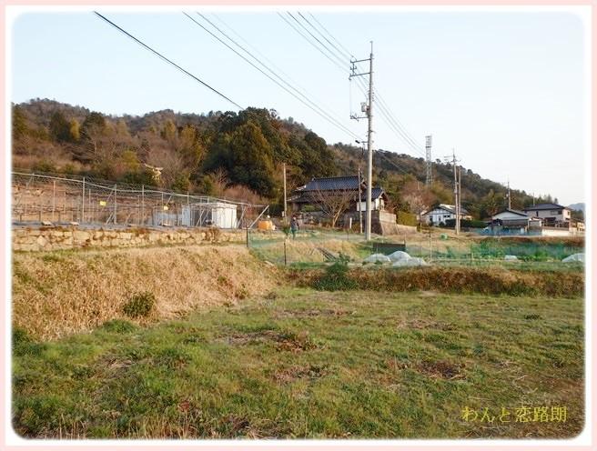 f:id:yasukazu01:20140313230008j:image