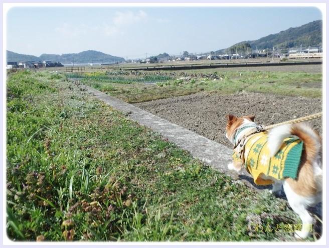f:id:yasukazu01:20140315203208j:image