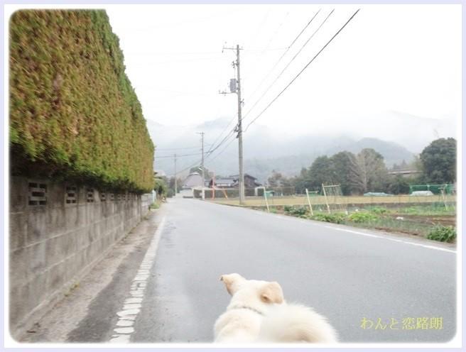 f:id:yasukazu01:20140318185945j:image