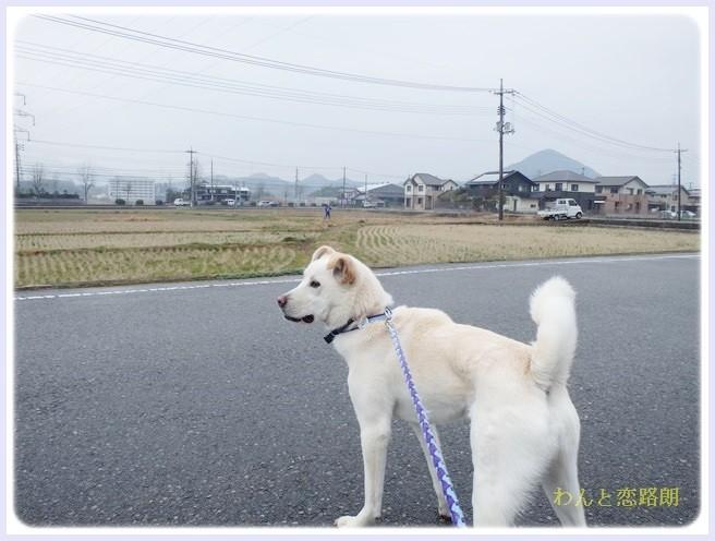 f:id:yasukazu01:20140318185949j:image