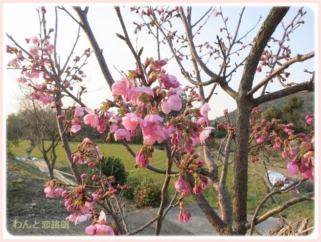 f:id:yasukazu01:20140326201256j:image