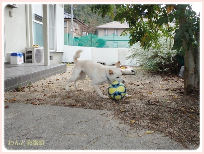 f:id:yasukazu01:20140401221955j:image