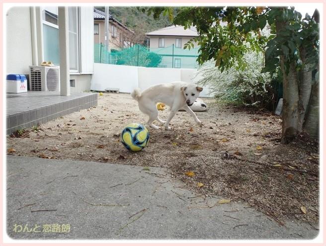 f:id:yasukazu01:20140401221956j:image