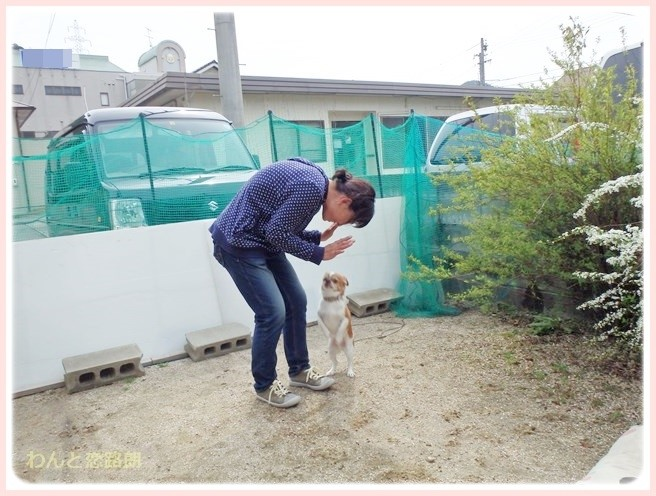 f:id:yasukazu01:20140402215940j:image