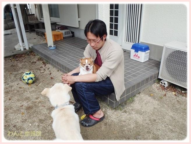 f:id:yasukazu01:20140402220218j:image