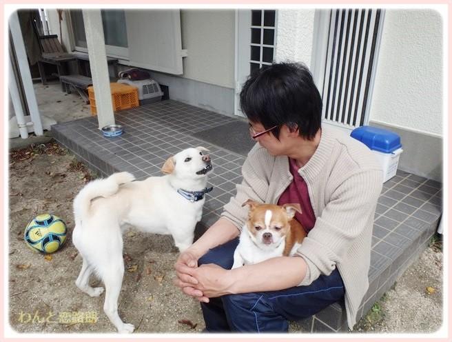 f:id:yasukazu01:20140402220219j:image